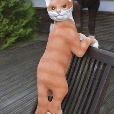 Kissapatsas, kiipeävä, punaruskea