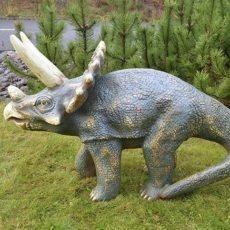 dinosauruspatsas, Triceratops poikanen