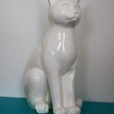 White cat kissapatsas, istuva valkoinen sinisellä tasolla
