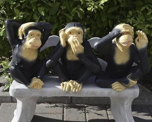 apinapatsaat, istuvat penkillä