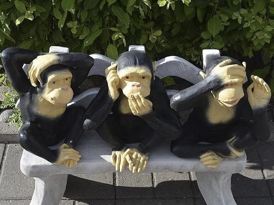 Apinapatsaat, ei kuule, ei näe, ei puhu