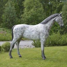 Hevospatsas, suuri hevonen, kuvattu sivustapäin