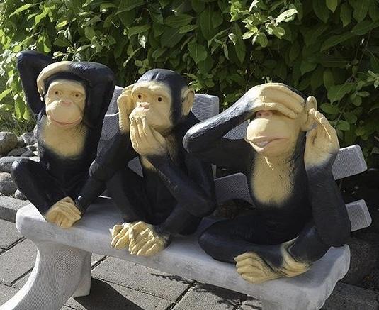 apinapatsaat