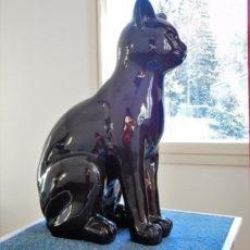 Kissapatsas sivusta, musta kiiltävä kissa istuu pöydällä