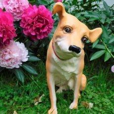 Nipper Koirapatsas, kukkien vieressä