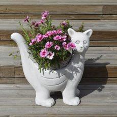 Kissapatsas, betonipatsas, ruukku, kuvattu kukkasin