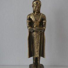 Buddhapatsas, kullan värinen, kuvattu edestä