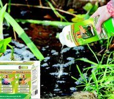 Allasveden hoitosetti 1-2-3
